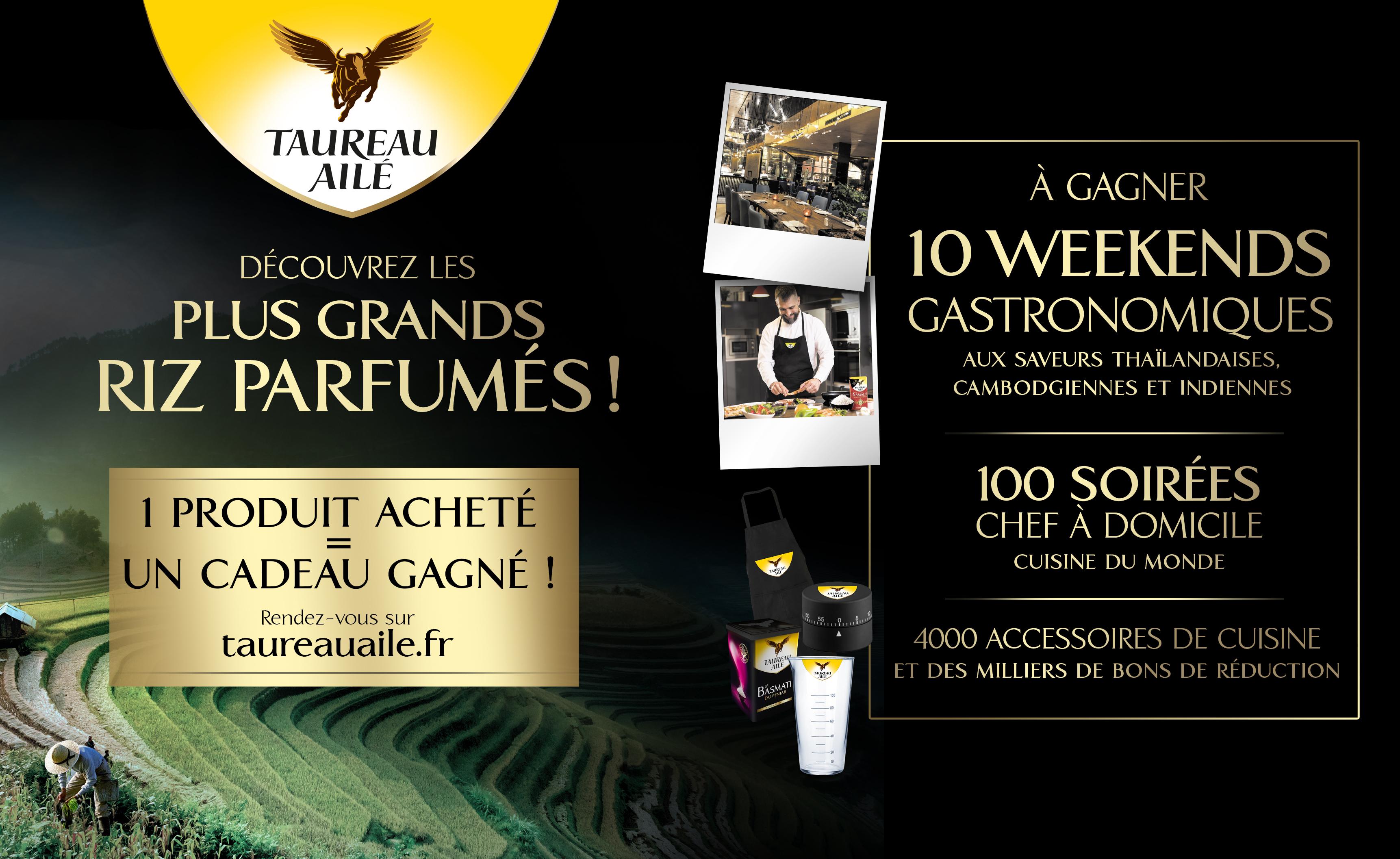 TAUREAU AILÉ «À LA DÉCOUVERTE DES PLUS GRANDS RIZ !»